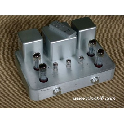 Raysonic SP 100 MK II